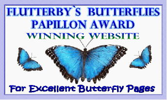 Butterfly Lover Award
